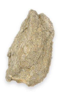 calcaire-blanc